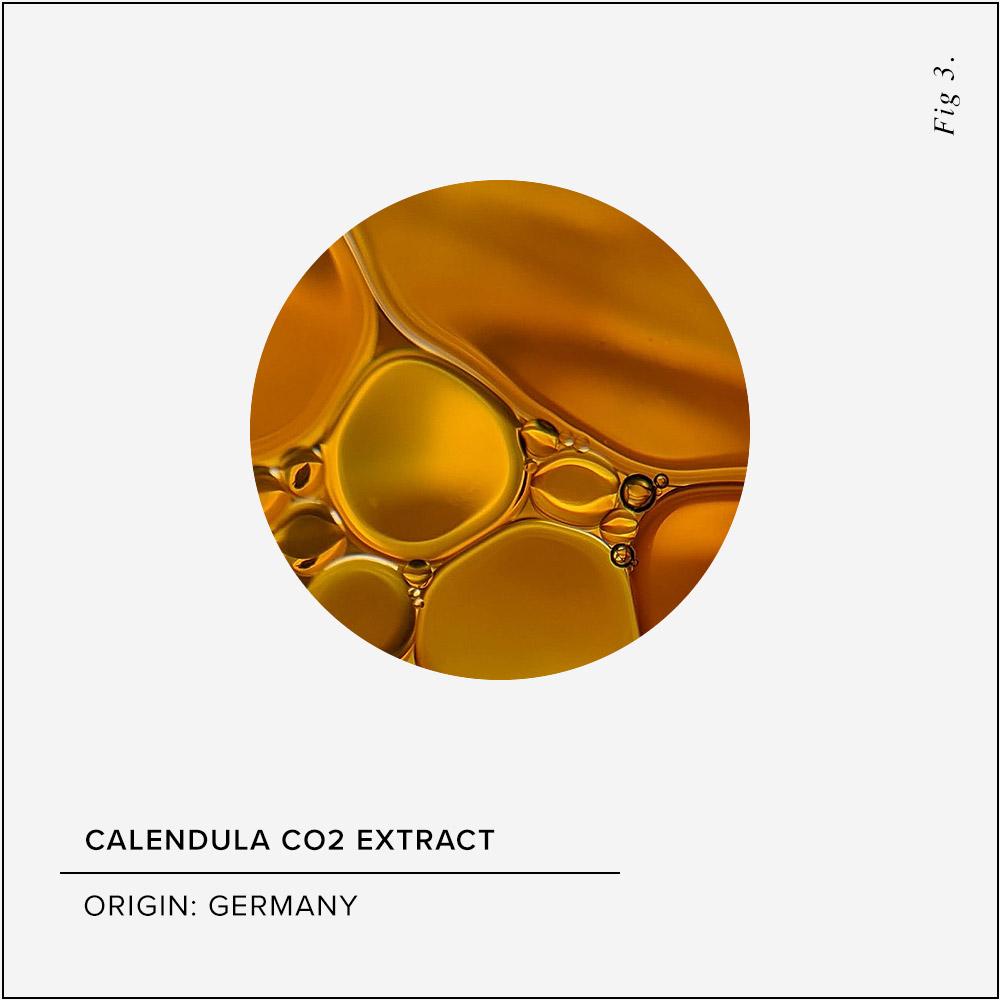 Calendula Skin Benefits