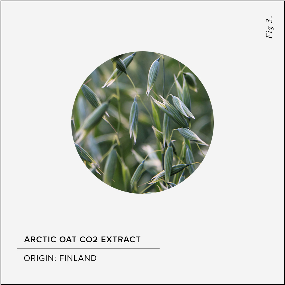 Arctic Oat CO2 Extract Skin Benefits