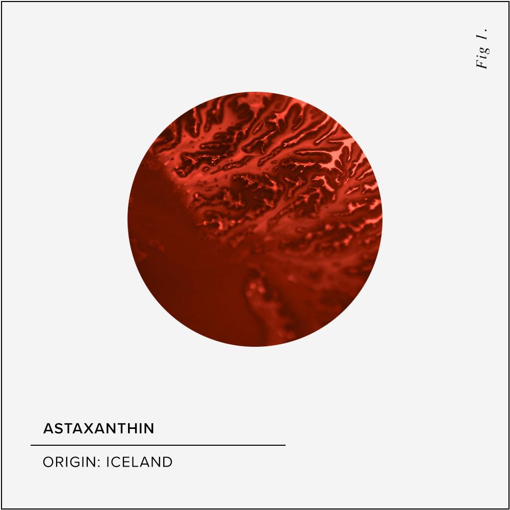 Astaxanthin Skin Benefits