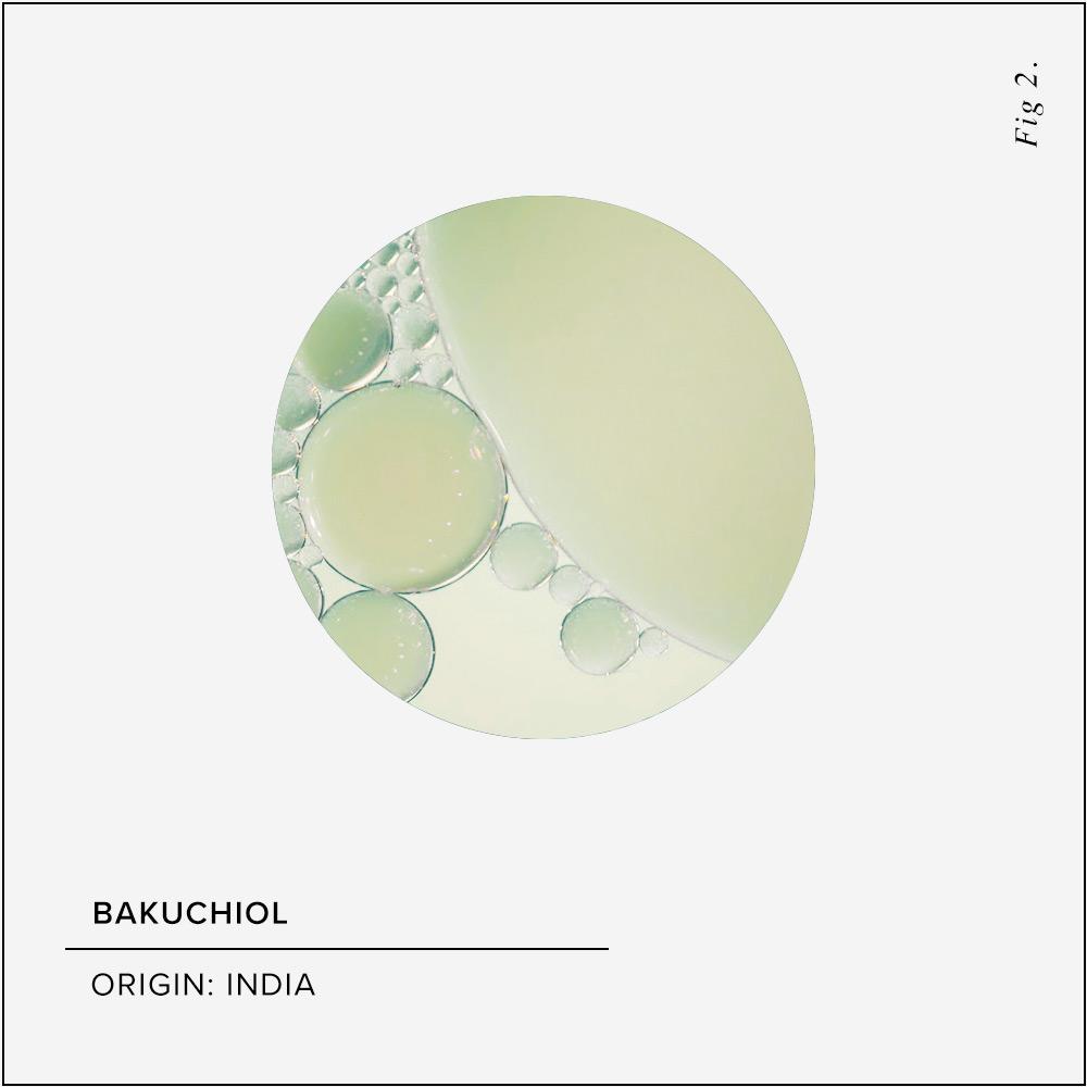 Bakuchiol Skin Benefits
