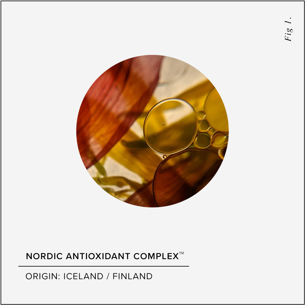 Nordic Antioxidant Complex Skin Benefits